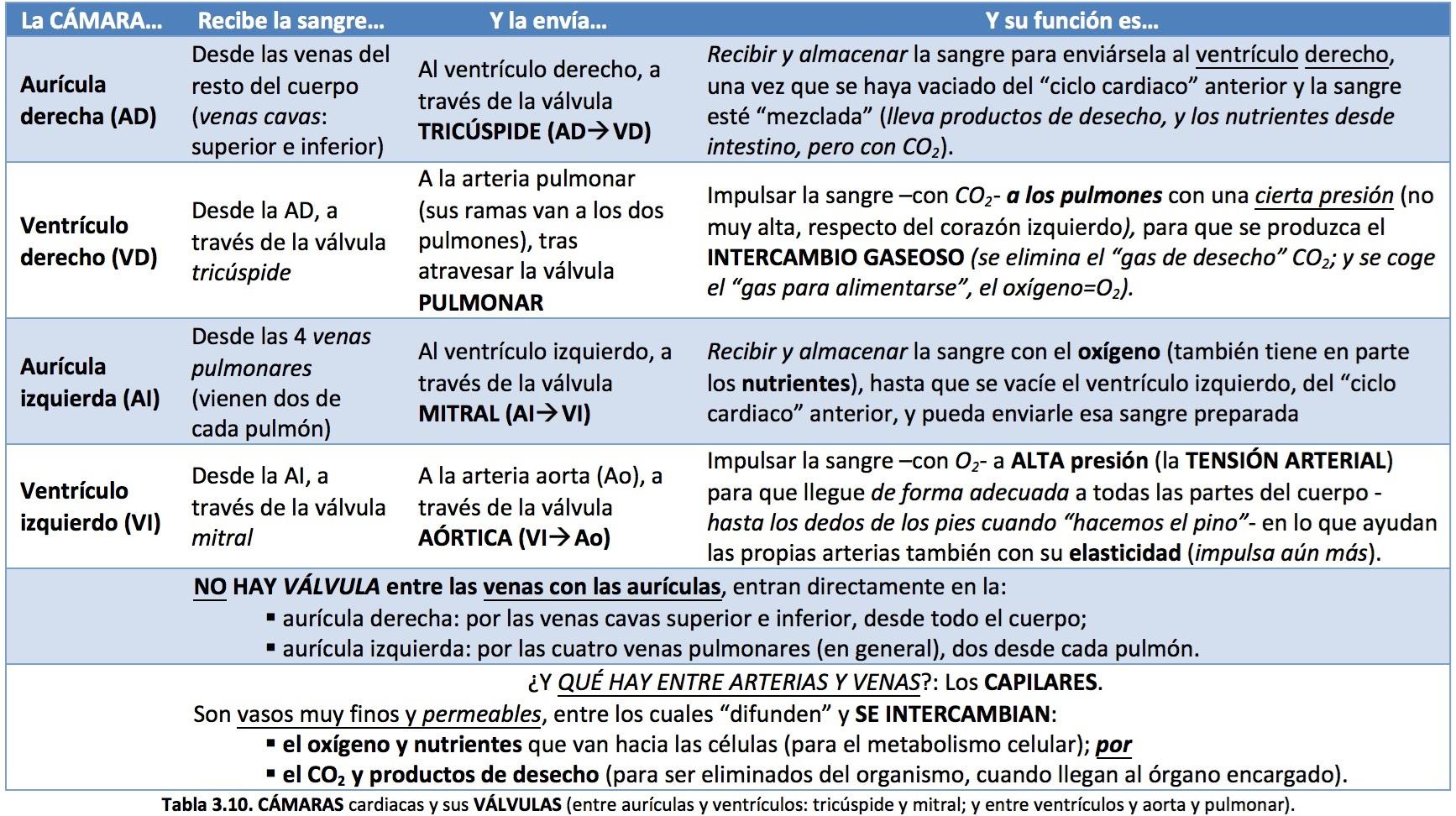CORE radiológico   PACIENTES   Radiología Básica   Enfermedades ...