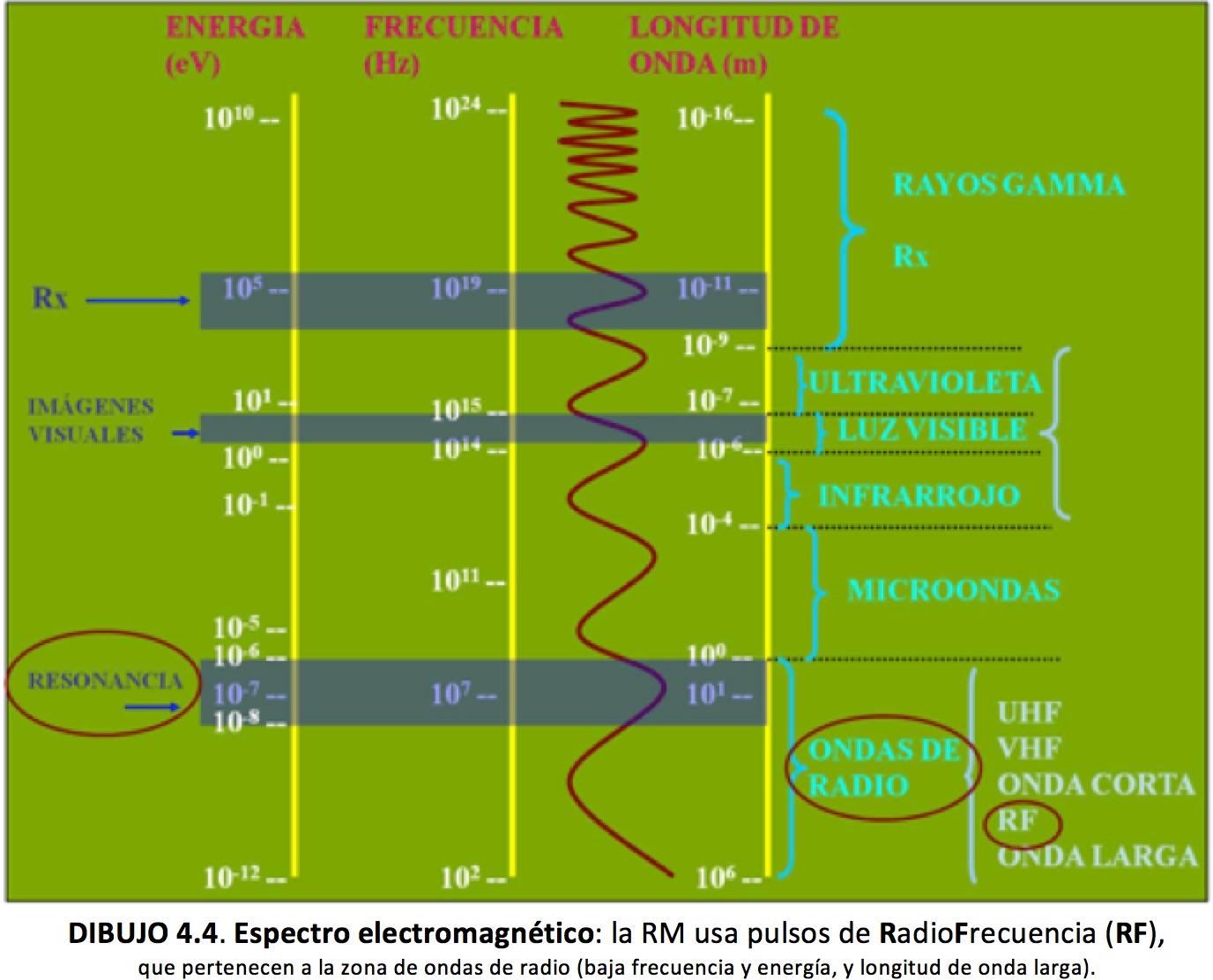 CORE radiológico | PACIENTES | Radiología Básica | Estudios de ...